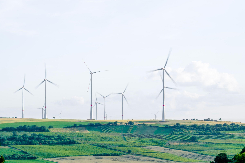 [Podcast] Développement durable : deux formations pour nos administrations